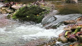 Fresh Creek Cascade in Autumn stock footage