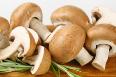 Fresh cremini mushrooms Royalty Free Stock Images