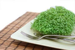Fresh cress on a plate. Isolated on white Royalty Free Stock Image