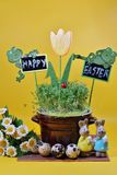 Fresh cress and rabbit and easter eggs Stock Photos