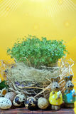Fresh cress and rabbit and easter eggs Stock Images