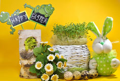 Fresh cress and rabbit and easter eggs Royalty Free Stock Photography