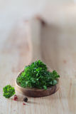 Fresh parsley leaves on a wooden spoon Royalty Free Stock Image