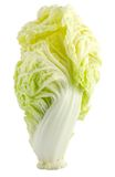 Fresh crispy lettuce heart. On white background Stock Photography