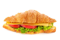 Fresh croissant with cheese Royalty Free Stock Image