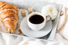 Fresh Croissant, Cup of Coffee and Ranunculus Flowers. Breakfast. Breakfast in Bed from fresh Croissant and Cup of Coffee on the grey tray, Ranunculus Flowers Royalty Free Stock Photos