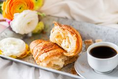 Fresh Croissant, Cup of Coffee and Ranunculus Flowers. Breakfast. Breakfast in Bed from fresh Croissant and Cup of Coffee on the grey tray, Ranunculus Flowers Stock Photos