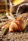 Fresh croissant with organic wheat stock photography
