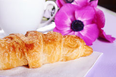 Fresh croissant Stock Photography