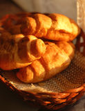 Fresh croissants in basket Royalty Free Stock Photography