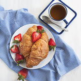 Fresh croissants and cup of tea Royalty Free Stock Photo