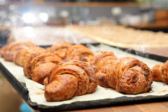 Fresh croissants removed from the oven.  Royalty Free Stock Image