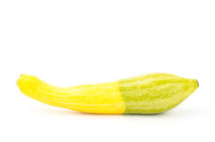 Fresh crookneck squash Royalty Free Stock Photos