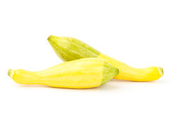 Fresh crookneck squash Stock Photography