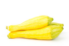 Fresh crookneck squash Royalty Free Stock Image