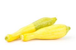 Fresh crookneck squash Royalty Free Stock Images