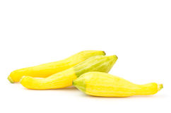 Fresh crookneck squash Stock Images