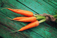 Fresh crop of carrots tie beam Royalty Free Stock Photography