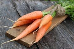 Fresh crop of carrots tie beam Stock Photo