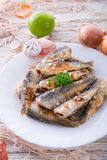 Crossly inlaid fried herrings Stock Photos