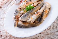 Crossly inlaid fried herrings Royalty Free Stock Photo