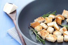 Fresh croutons Stock Photos