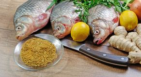 Fresh crucian on a wooden cutting board. Close up Royalty Free Stock Images