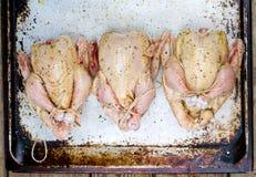 Fresh, crude farmer chicken Stock Photos