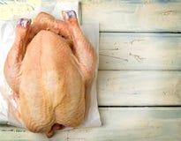 Fresh, crude farmer chicken Stock Photography