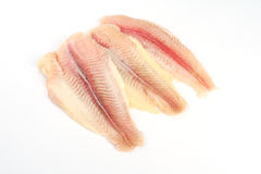 Fresh crude fish fillet. On the white Royalty Free Stock Photo