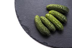 Fresh crunchy cucumbers, white and black background. Good quality close up photo of fresh ripe pimply  cucumbers served on stylish rough black shale board. The Stock Image