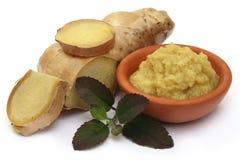 Fresh crushed ginger with holy basil Royalty Free Stock Image