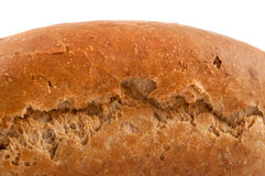 Fresh crusty loaf. Stock Images