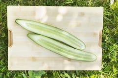 Fresh cucumber on board in garden grass Stock Photo