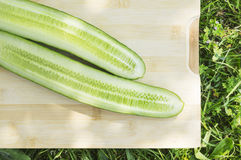 Fresh cucumber on board in grass Royalty Free Stock Photography