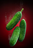 Fresh cucumber with bubbles Royalty Free Stock Image