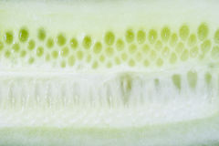 Fresh cucumber close-up Royalty Free Stock Images