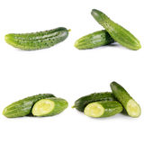 Fresh cucumber isolated on white background Stock Photography