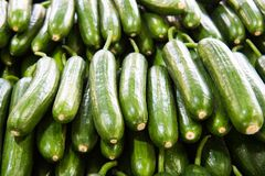 Fresh cucumber in the market Royalty Free Stock Photos
