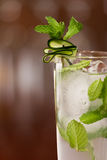 Cucumber mojito Stock Photos