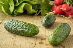 Fresh cucumber Royalty Free Stock Photo