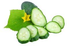 Fresh Cucumber Organic Vegetables Stock Images