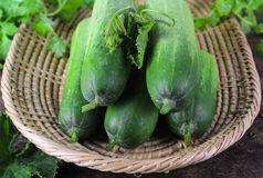 Fresh cucumber, raw organic vegetable. Fresh cucumber on wooden background, raw organic vegetable Stock Photography