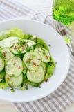 Fresh cucumber salad in bowl Royalty Free Stock Photo