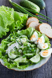 Fresh cucumber salad. Fresh cucumber slices with sour cream, boiled egg and green onion on a plate Stock Photography