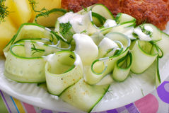 Fresh cucumber salad with sour cream and dill Royalty Free Stock Photo