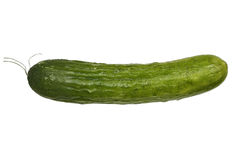 Fresh cucumber Stock Photo