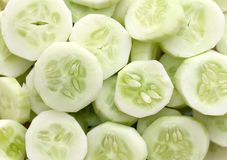 Fresh Cucumber and slices white background. Royalty Free Stock Image