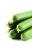 Fresh Cucumber Stock Photos