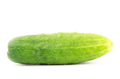 Fresh cucumber. On white background Stock Photography